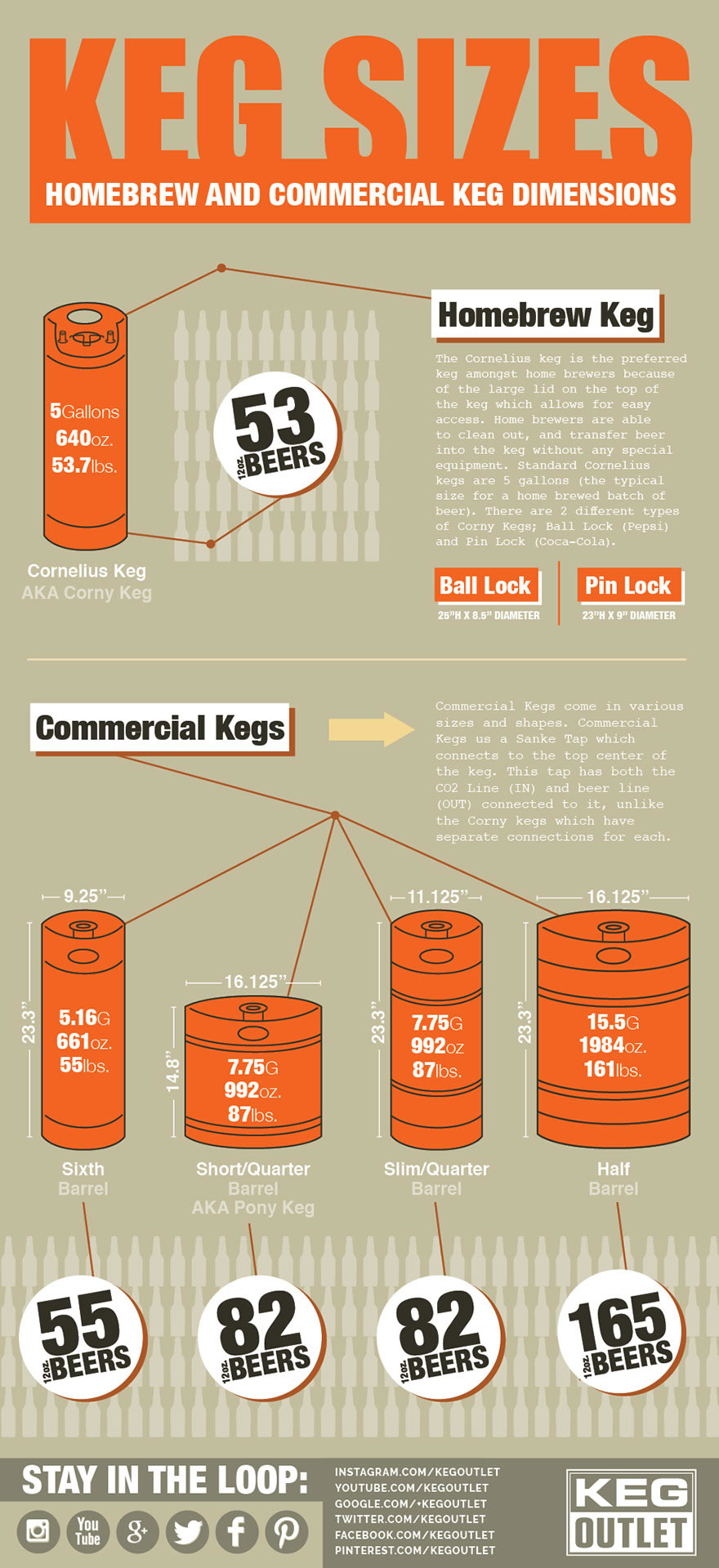 Keg Sizes Infographic Homebrew And Commercial Keg Dimensions