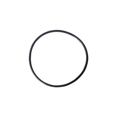 "O-Ring for 10"" Filter Housing"