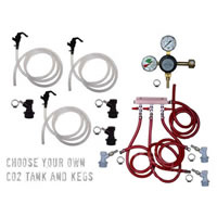 Basic Homebrew Keg Kit - Triple Tap - BALL LOCK - Taprite /